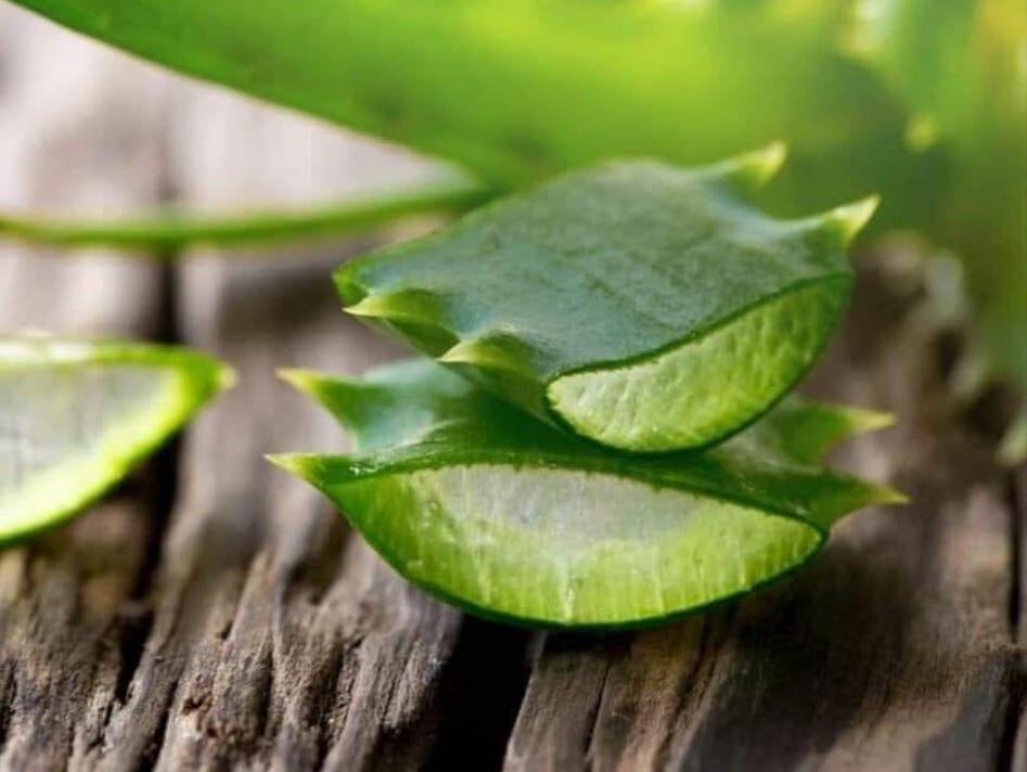 C-vitamin az aloe vera ital része
