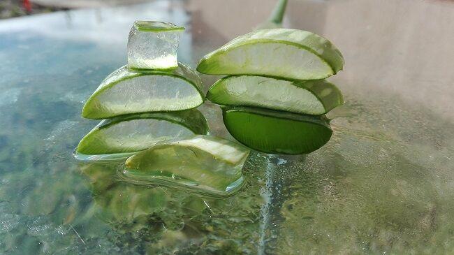 Aloe vera diéta 4 recepttel