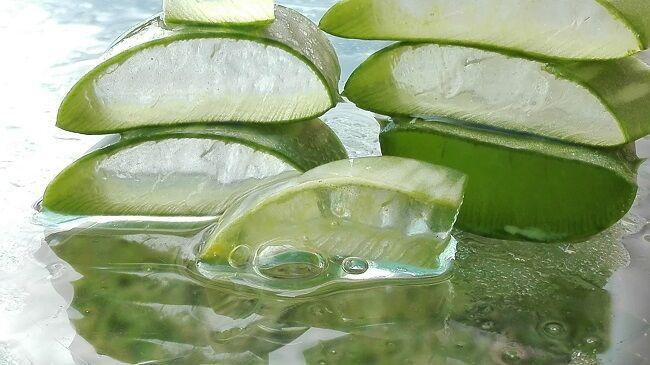 Aloe vera ízületi gyulladásra - arthritis