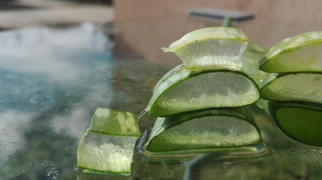Aloe vera káros hatásai
