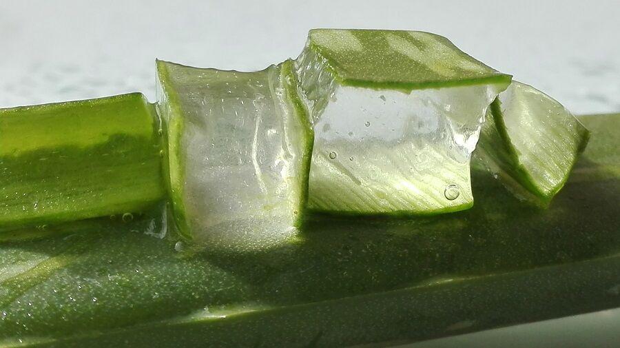 Az Aloe Vera gél előnyei a bőr számára