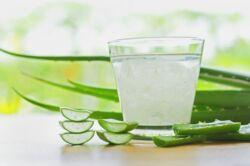 aloe vera ital reflux esetén